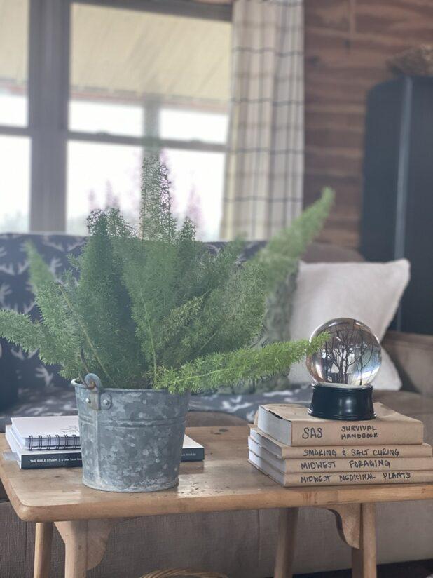 Winter Decor, Log Home, Rustic Decor, Snow Globe