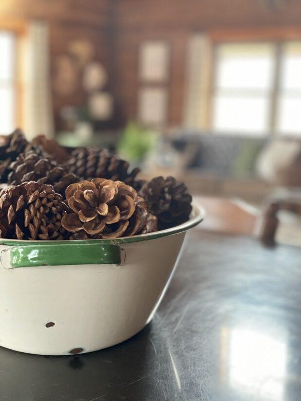 Enamelware Bowl, Pine Cones, Farmhouse Style Decorating, Winter Decorating, Log Home