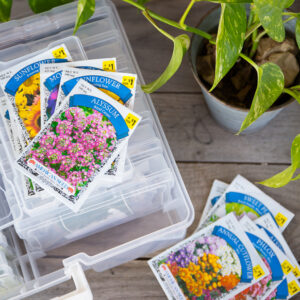 How To Organize & Store Garden Seeds Using A Photo Storage Box