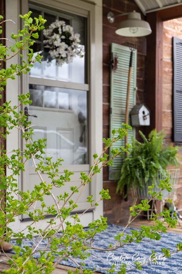 Rustic Log Home Porch Using Green, Blue, Boston Ferns, Shutters
