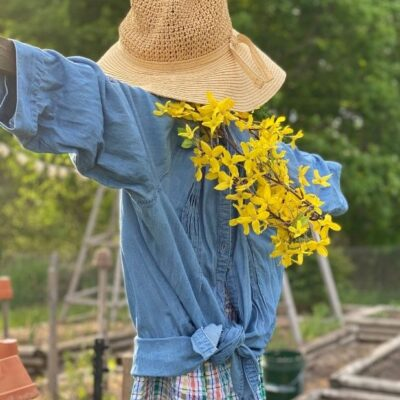 How to Make a Garden Scarecrow With Rustic Junk – Over 20 Ideas