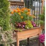 Fall Decorating Ideas and Inspiration For Outside